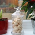 jar of meringues