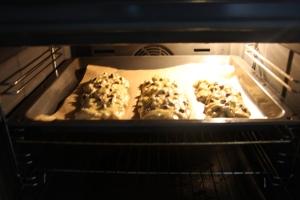 "Terrible photo of biscotti ""logs""!"