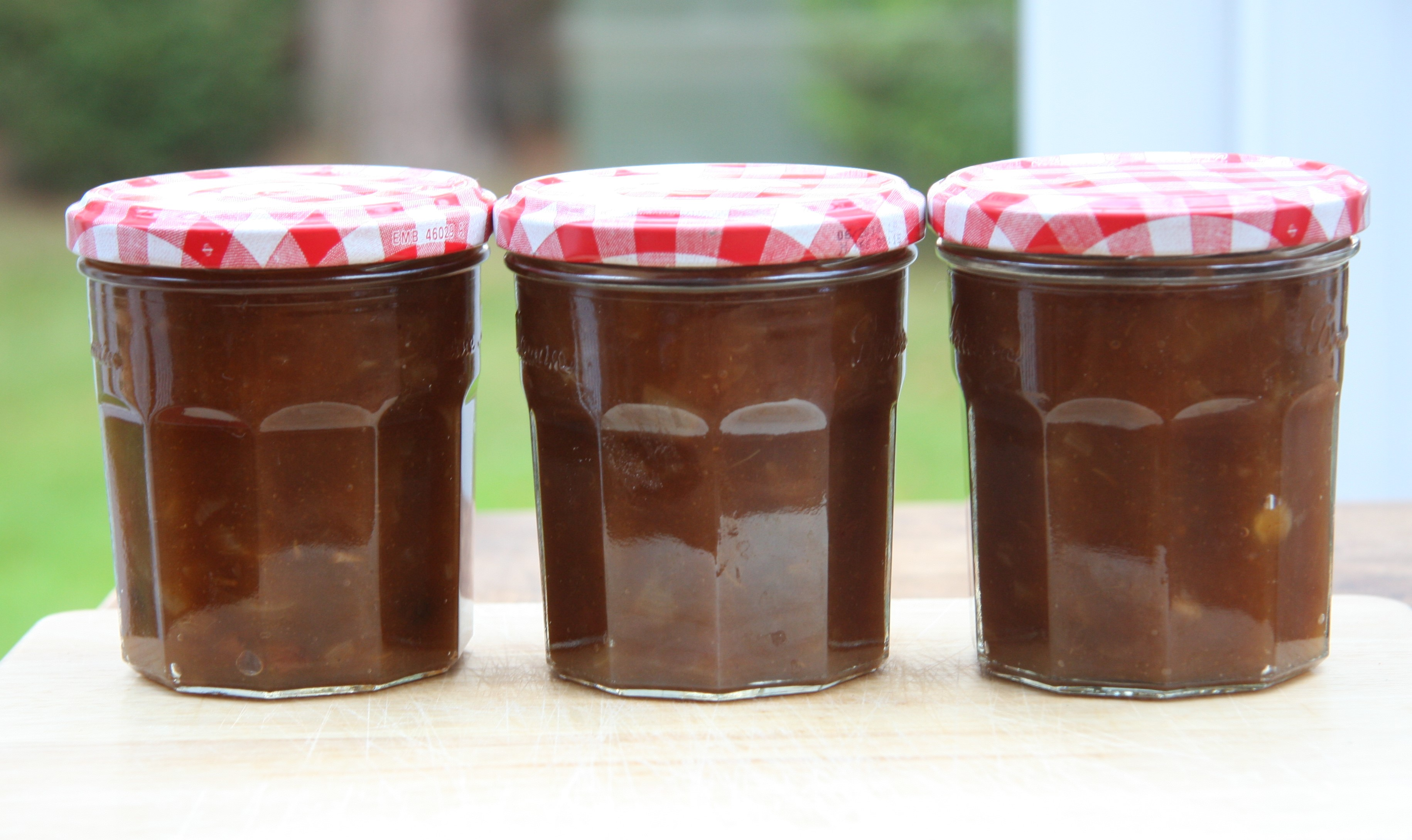 Apple Chutney – a good way to use up some of your apples «