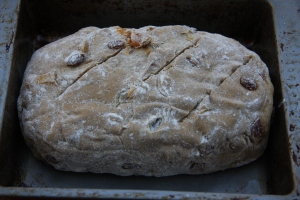 fruit bread dough