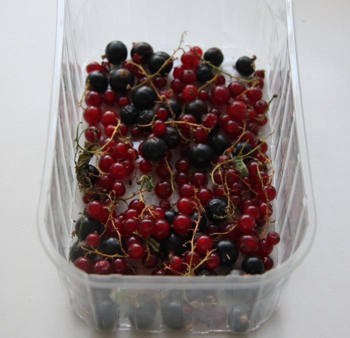 blackcurrants redcurrants