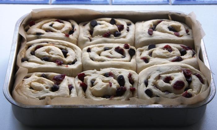 cranberry chocolate buns