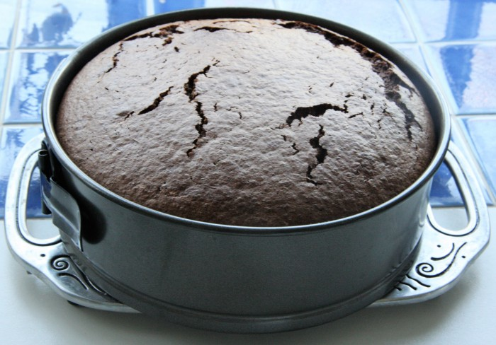 Rich chocolate cake gluten free